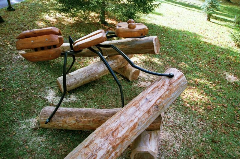 Mravlja v parku lesarske šole v Postojni